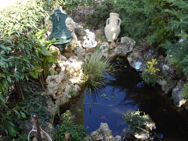 Le bassin et sa rocaille S1050211