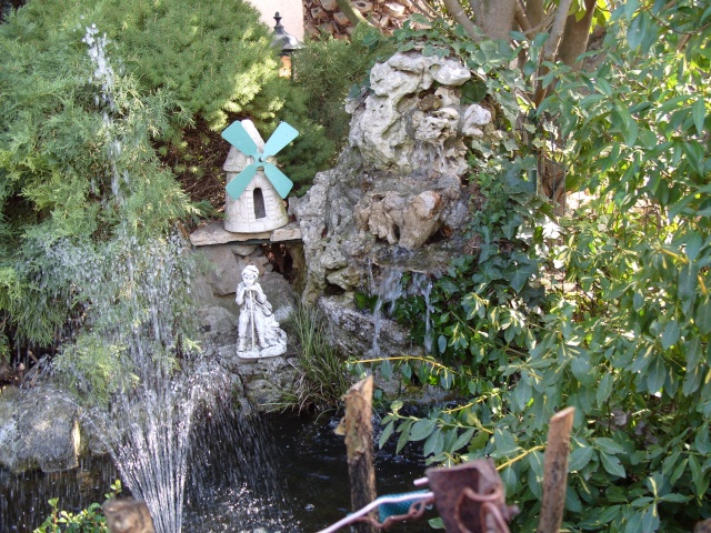 Le bassin et sa rocaille S1050212
