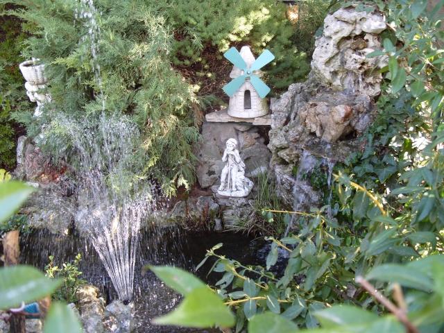 Le bassin et sa rocaille S1050213