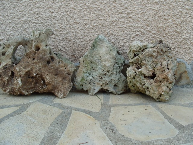 Pierres volcaniques S1051129