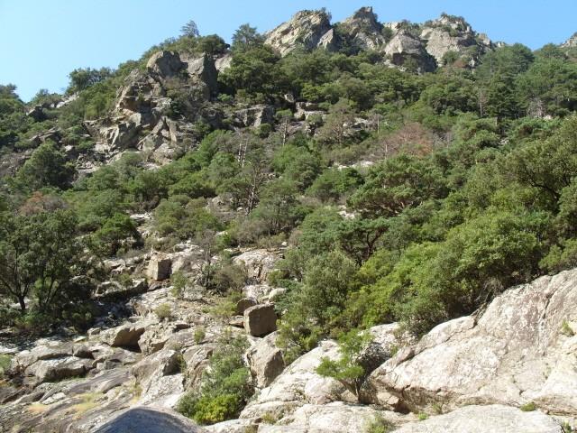 Les Gorges d'Héric S1051218