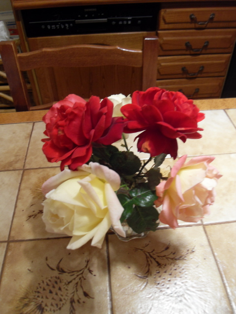 Floraisons de décembre  - Page 2 Sdc10216