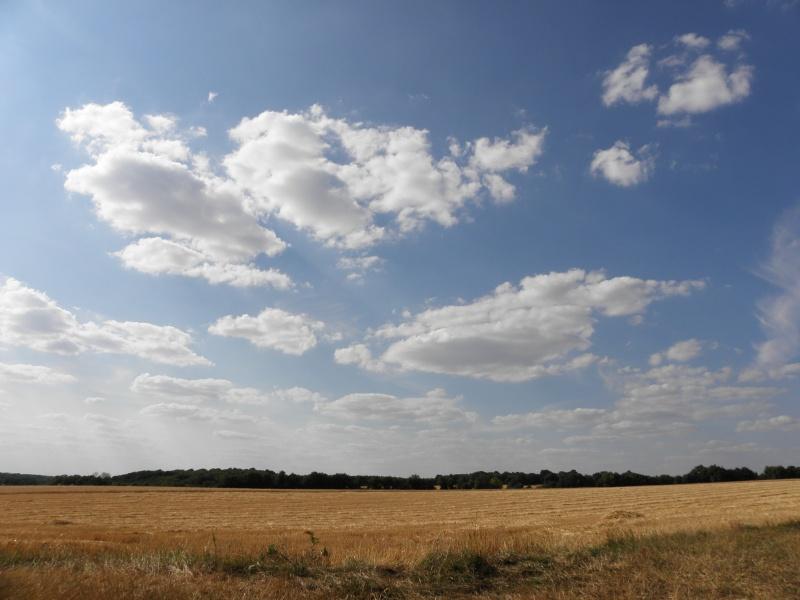 2011: le 13/07 -  - Une soucoupe volante - saint loup des bois 58200 (nievre)  - Page 2 P7150010