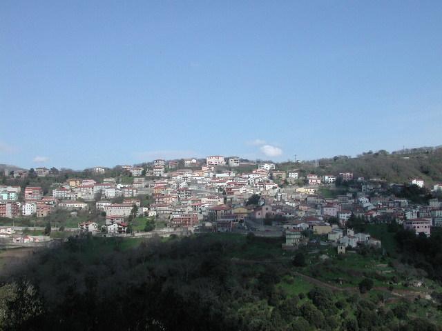 www.gadoniforum.forumattivo.it
