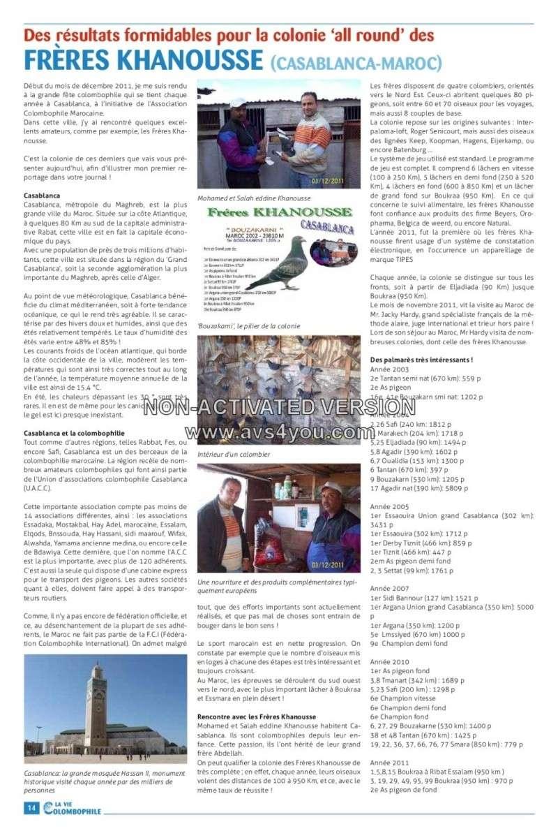 Pigeons voyageurs de Casablanca: Frères Khanousse Khanou10