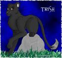 [I'm Addicted] Trish10