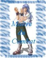Maitre du combat