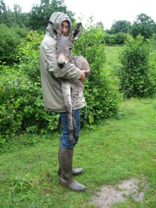 une nouvelle naissance  2009 je suis toute mignonne - Page 3 Img_0169