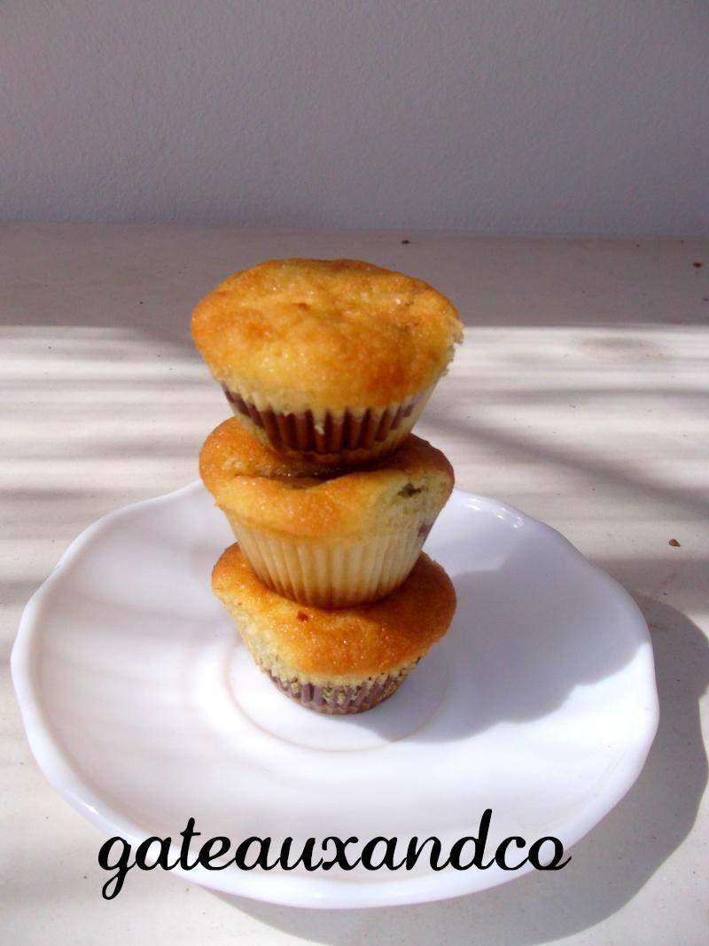 Cupcakes : recettes et décors simples - Page 6 Photo283