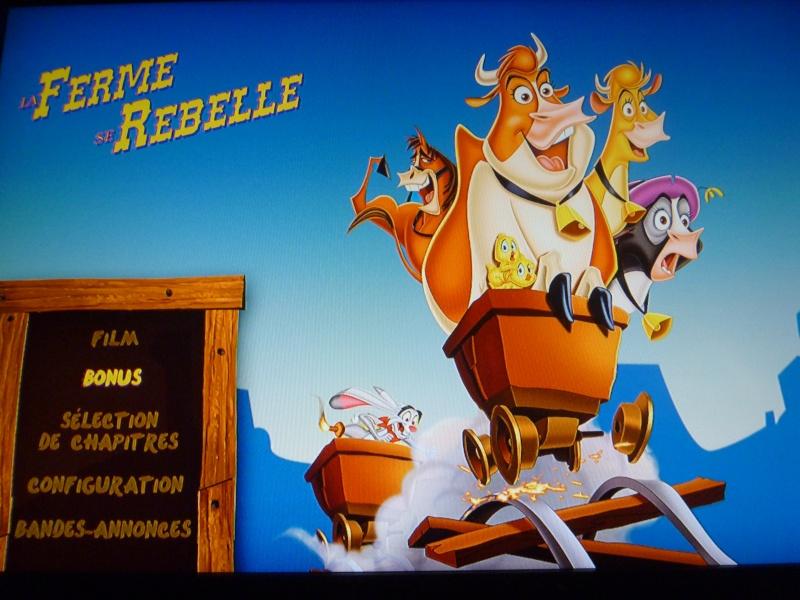 La Ferme se Rebelle [Walt Disney - 2004] - Page 4 P1000910