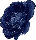 Rose Bleue de Brienne