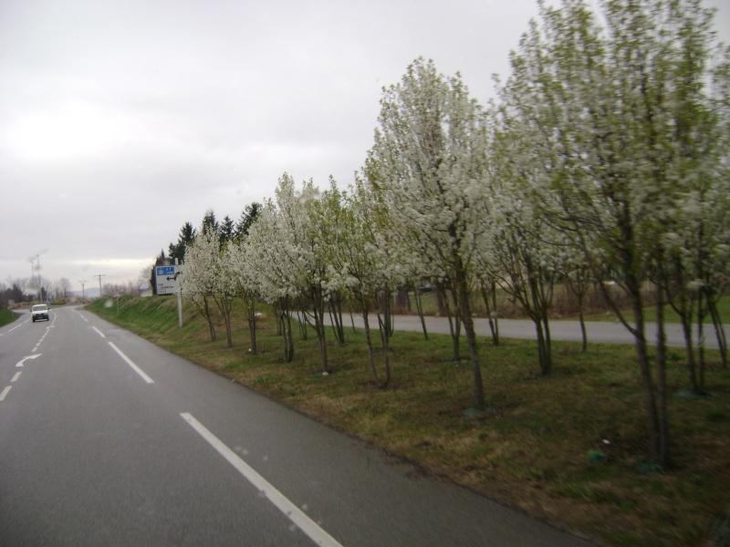 Photo de route de Chrome66 01410
