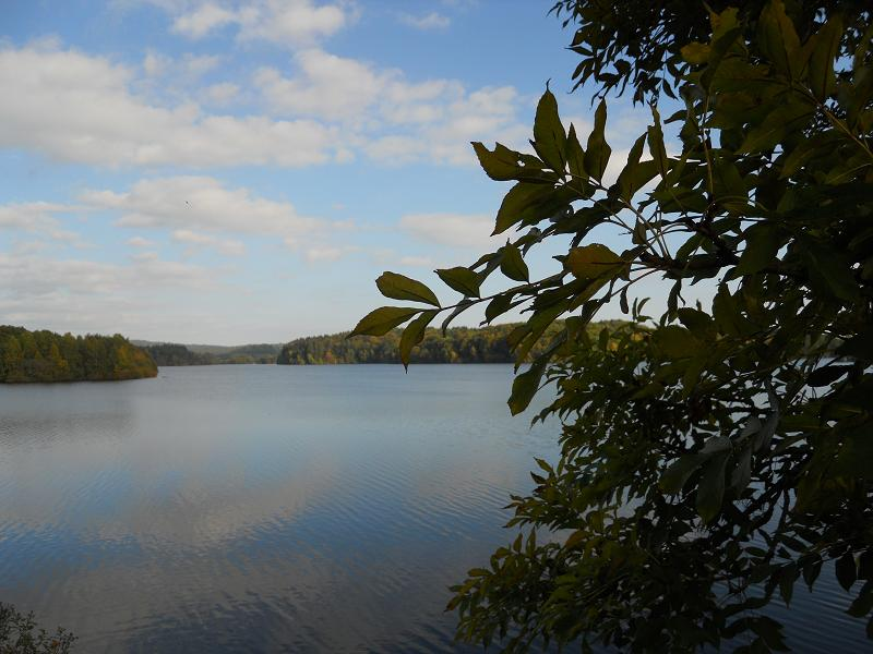 Lacs de l'Artense (La Crégut, Lastioulles...) Dscn0414