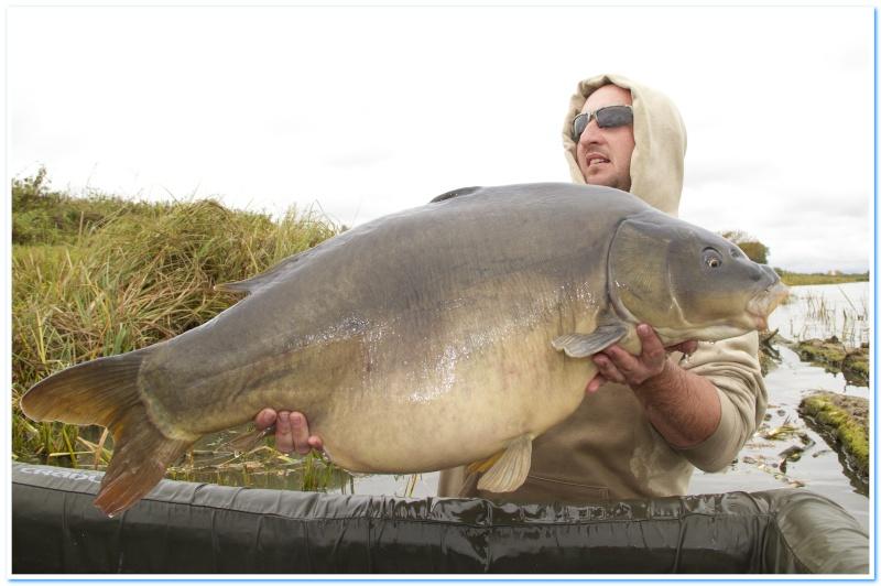 Quelle poisson vous a marquez le plus durant cette année 2011 ? - Page 2 Miroir10