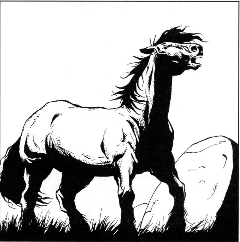 Bestiaire de Tanaephis : Le Chagar Chagar10