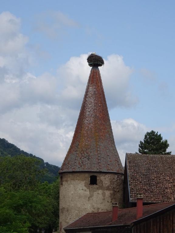13 et 14 Juillet 2019: les 90 ans de la 201 en Alsace - Page 2 Dsc02810
