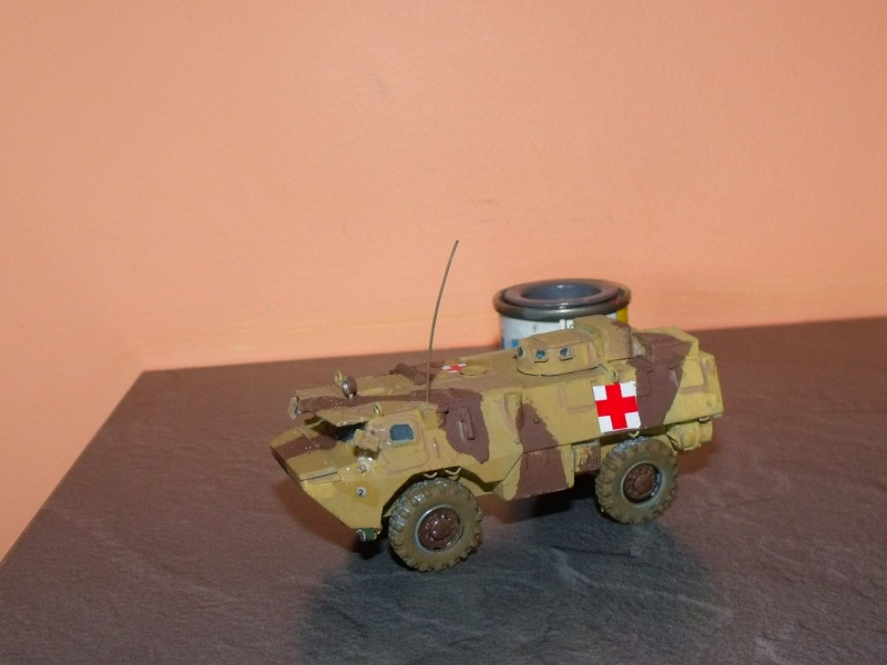 Kit ADV mini VAB SAN au 1/72 Dscf3728