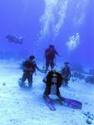 رياضة الغوص بالبحر الاحمر مركز imeidiving 2006_015