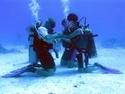 رياضة الغوص بالبحر الاحمر مركز imeidiving 2006_017