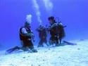 رياضة الغوص بالبحر الاحمر مركز imeidiving 2006_018