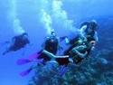 رياضة الغوص بالبحر الاحمر مركز imeidiving 2006_021