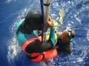 رياضة الغوص بالبحر الاحمر مركز imeidiving Freedi11