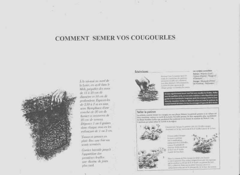 Fête de la Cougourle - TMJ Les_co10