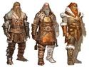 Guild Wars 2 : le gameplay, les classes et les races Gwe-no10