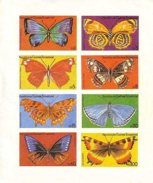 Schmetterlinge Pic00132