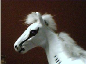 Set-List e  Fotos do show em Manaus - Page 4 Cavalo10