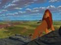 Le roi lion I, II, III 2464210
