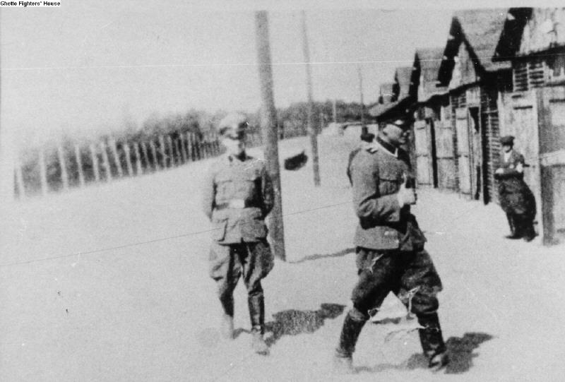 Des Einsatzgruppen à Aktion Reinhard Belzec11