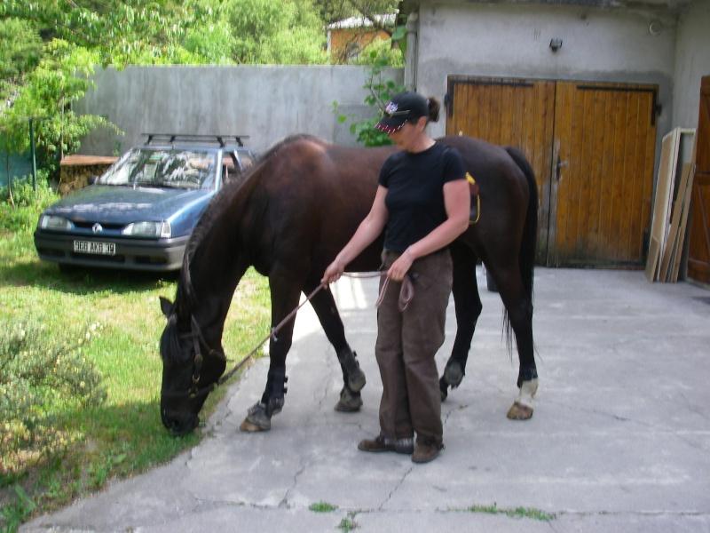 jade38 2007-012