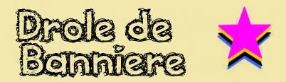 Concours « Drôle de Bannière » Sans_t25