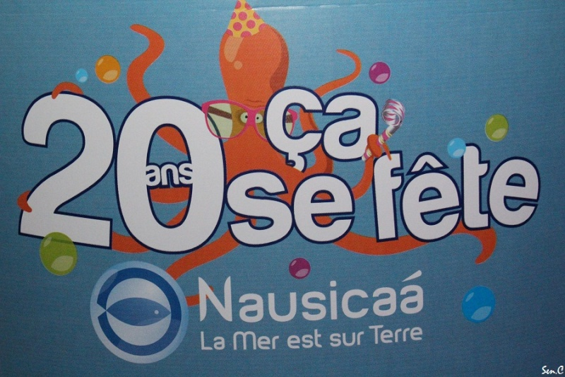 Nausicaa Img_3110