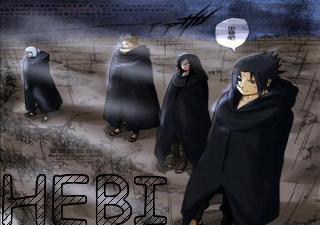La team Hebi