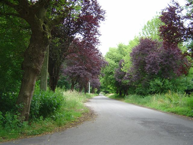 la commune où j'habite: GHLIN 20080532