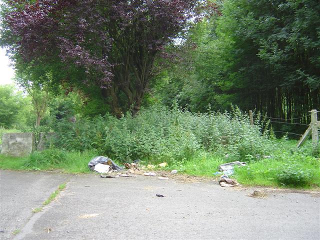 la commune où j'habite: GHLIN - Page 3 20080711