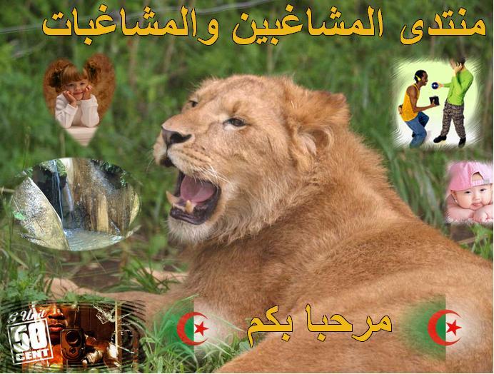 منتدى المشاغبين الجزائريين