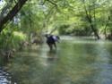 Koja je ovo reka? Timok_12
