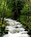 Río Oculto