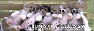 "Avatars ""Animaux"" Avatar13"