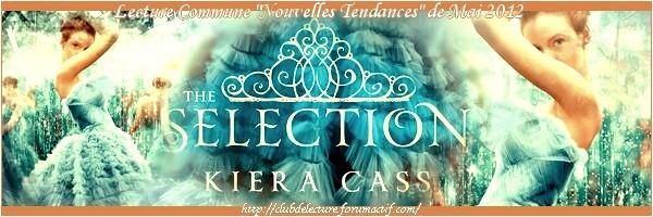 selection - LA SÉLECTION (Tome 01) de Kiera Cass - Page 2 Ban_sa10