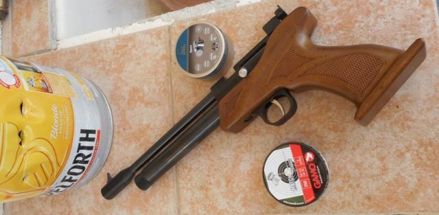 ARTEMIS CP1 en calibre 5,5 Dscn3334