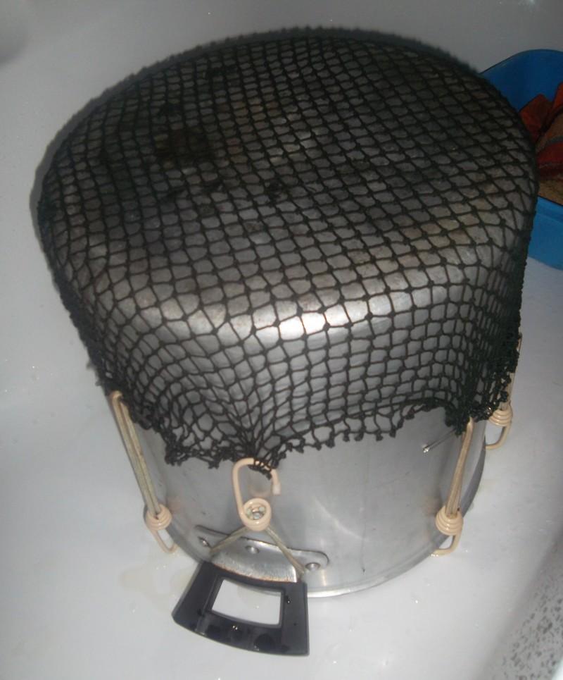 atelier  :agrandir  un filet  de  casque  Sam_0914