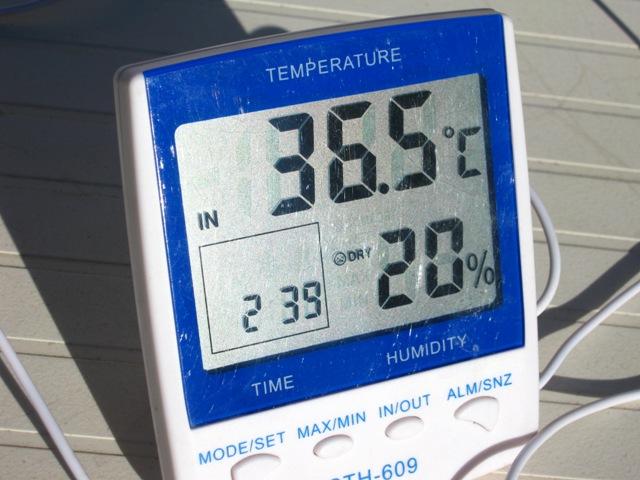 chaleur printanière ou......presque estivale aujourd'hui 36°5 Img_0140