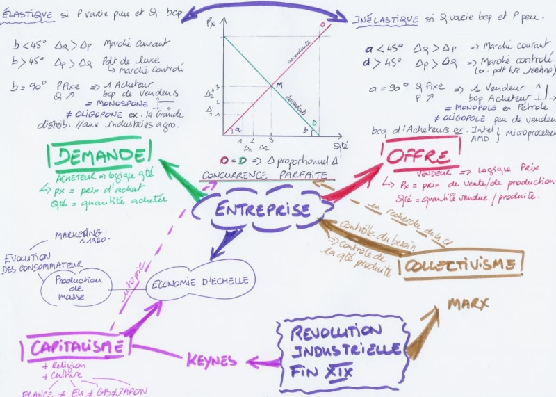 MIND MAPS Examples Scan0010