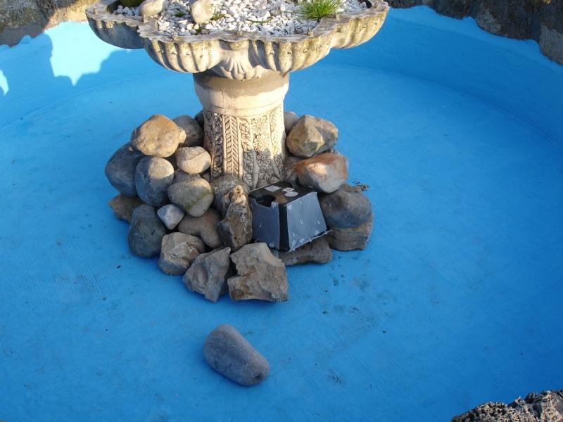 Finalmente o meu lago, vejam as fotos! Dsc01413