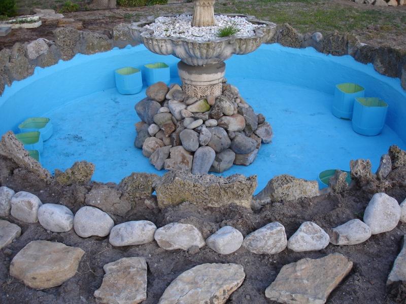 Finalmente o meu lago, vejam as fotos! Dsc01415