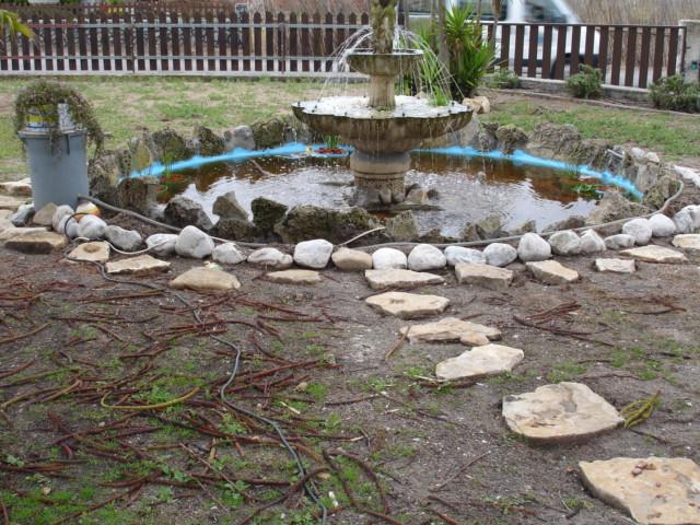 Finalmente o meu lago, vejam as fotos! Dsc01528